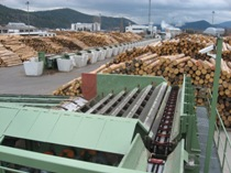 Technologies for the sawmill plants